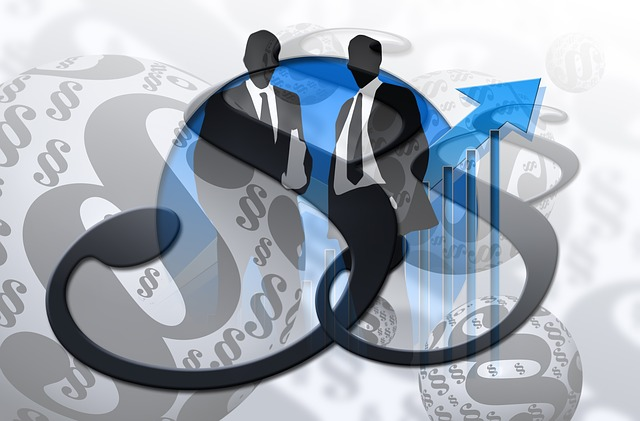 Steuerberater, Rechtsanwälte und Wirtschaftsprüfer